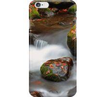 Autumn Cascades iPhone Case/Skin