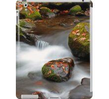 Autumn Cascades iPad Case/Skin