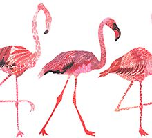 3 Tumblr Flamingos by emrapper