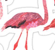 3 Tumblr Flamingos Sticker
