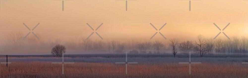 Fog over farm field by Jim Cumming
