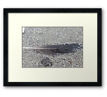 Buried Quill.  Framed Print