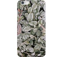 Frozen leaves iPhone Case/Skin