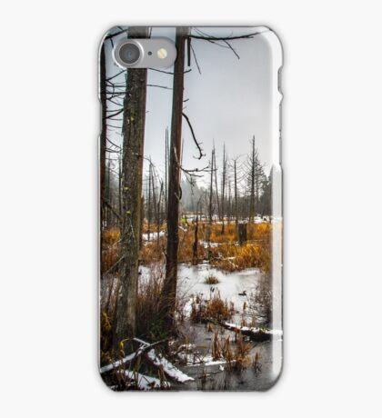 Frozen Lantzville iPhone Case/Skin