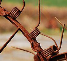 Rusty Tines by Mary Carol Story
