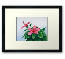 """Pink Hibiscus"" Framed Print"