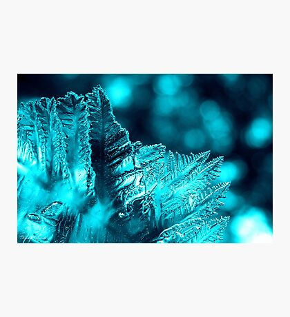Aqua Ice Photographic Print