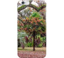 Mayday Hills Beechworth N E Victoria Australia iPhone Case/Skin