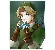 [The Legend of Zelda] Link Poster