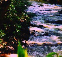River Stream Sticker