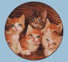 Sweet Kittens One Piece - Short Sleeve