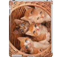 Sweet Kittens iPad Case/Skin