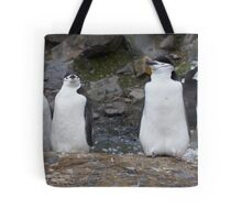 Chinstrap Penguins ~ Aerobics Workout Tote Bag