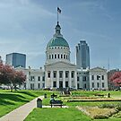 St Louis  by AnnDixon