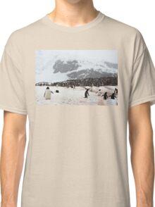 "Gentoo Penguins ~ ""Penguinville, Curville Island, Antarctica"" Classic T-Shirt"