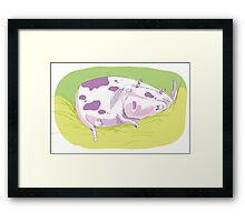 Tiny Spotted Sleeping Cow Framed Print