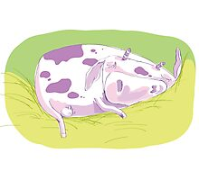 Tiny Spotted Sleeping Cow Photographic Print