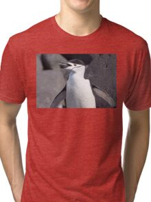 "Chinstrap Penguin ~ ""The Geologist"" Tri-blend T-Shirt"