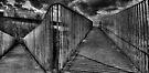 Footbridge Railings by Nigel Bangert