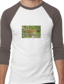 Female Red Skimmer Dragonfly  Men's Baseball ¾ T-Shirt