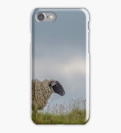 A Sheep on the Hillside iPhone Case/Skin