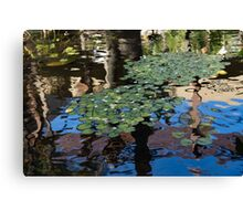 Unusual Waterlilies - a Charming Water Garden in Hawaii Canvas Print