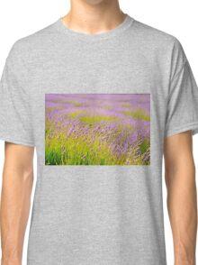 Lavender Field Classic T-Shirt