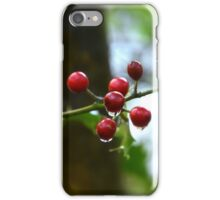 """ Raindrops On Holly "" iPhone Case/Skin"