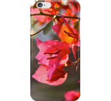 """Sunset on B'ville St. iPhone Case/Skin"
