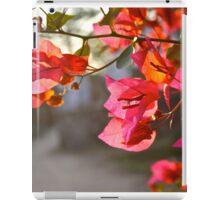 """""""Sunset on B'ville St. iPad Case/Skin"""
