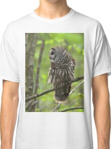 Barred Owl looking for dinner Classic T-Shirt