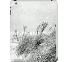 Snow Light in Black and White iPad Case/Skin
