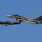RAF Synchro Pair by Barrie Woodward