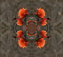 Orange Roses by Forfarlass