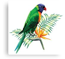 Colorful Parrot & Birds Of Paradise  Canvas Print