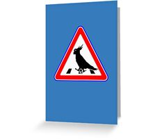 Bird-Crosswalk Greeting Card