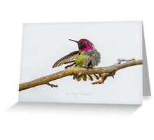 TIME TO STRETCH Greeting Card