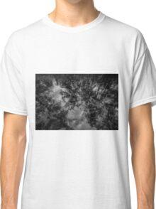 High Springs Classic T-Shirt