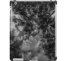 High Springs iPad Case/Skin