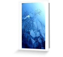 A different Perspective.........Icy Lake Greeting Card