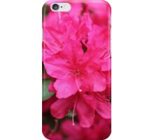 Magenta Azalea Flower iPhone Case/Skin