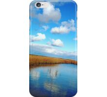 Reflection Pool  iPhone Case/Skin