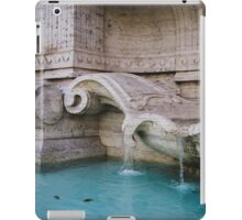 Details Of A Fountain iPad Case/Skin