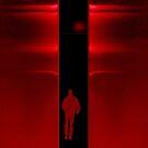 Red night by Bluesrose