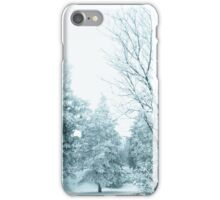 Snow and frost covered pine trees iPhone Case/Skin