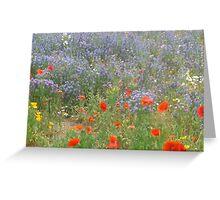 Poppy Heaven Greeting Card