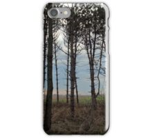 Line of Fall Trees iPhone Case/Skin