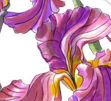 Irises-1 Sticker