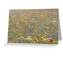 Fabulous Field of Flowers Greeting Card