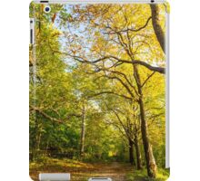 trekking path in the forest iPad Case/Skin